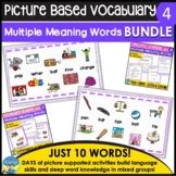 Homonyms Bundle Set 4 Learning and Applying Multiple Meanings Task Cards