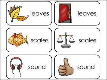 Homonyms Picture Word Flash Cards.
