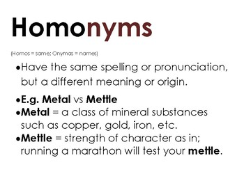 Homonyms Word Mat