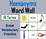Homonyms Word Wall Cards