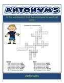 Homonyms and Antonyms -  Language Word Study 28 Pages