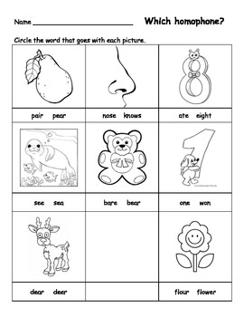 Homophone Bundle 15 pgs with cute Ants graphics