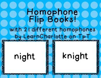 Homophone Flip Book