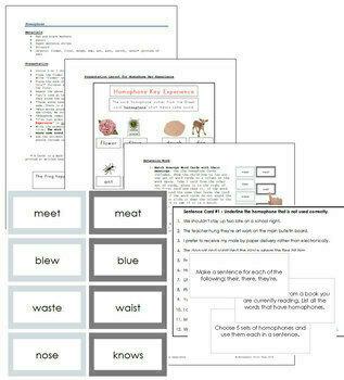 Homophone Key Experience & Materials - Elementary
