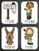 """Homophone Matching Game and Sort- """"Chalkboard"""""""