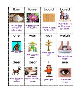 Homophone Picture Match with Recording Sheet
