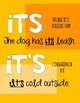 Homophone Posters and Practice