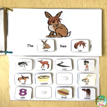 Homophones Silly Sentences: Interactive Books, Cards, and More!