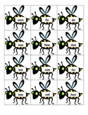 Homophone Sorting Cards - 66 Pairs - Bee - Any Curriculum