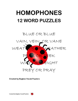 Homophone Word Puzzles