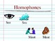 Homophone and Homograph