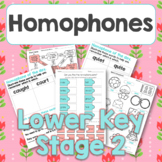 Homophone of the day PLUS mixed activities set 2