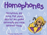 Homophones - 2 Activities - Match and Sentence Completion