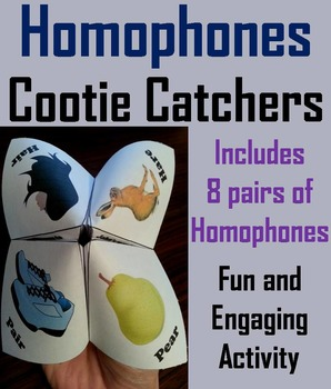 Homophones Game