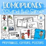 Homophones Worksheets Activities and Posters