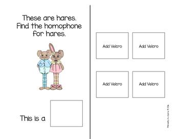 Homophones  (An Adapted Book)