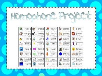 Homophones Computer Project