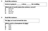 Homophones-Homonyms 2 Pretests/Posttests