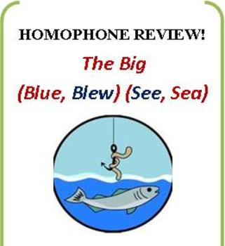 Homophones & Literary Devices Review: With Quiz and Key!