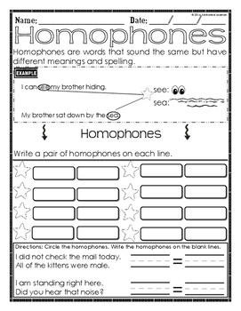 Homophones : A Grammar Mini-Lesson (3) Assessments Included