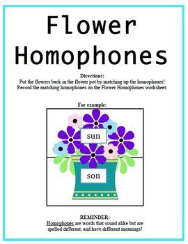 Homophones Packet