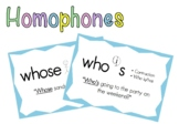 Homophones Poster - Who's and Whose