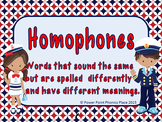 Homophones Power Point and Printables