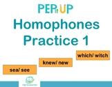 Grammar Handout | Homophones Practice 1 | Fillable PDF | D