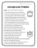Homophones Practice Worksheet