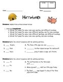 Homophones Quiz/Test