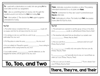 Homophones Review Flipbook