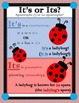 Homophones Task Cards- Its and It's