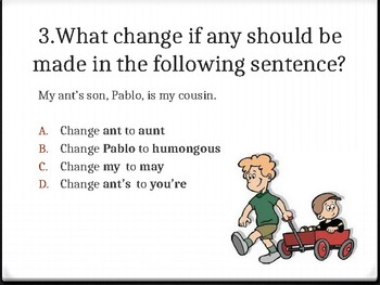 Homophones Test- Ant and Aunt