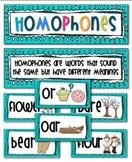 Homophones Word Wall Cards, Grades K-3, ESL, SPED