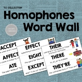 Homophones Word Wall - From the TC Collection