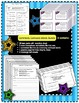 Homophones and Commonly Confused Words BUNDLE - Worksheets and Task Cards!