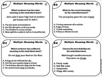 Homophones and Homographs Task Cards 2nd 3rd 4th 5th 6th Grade