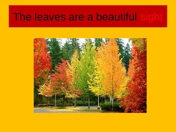 Homophones-fall theme
