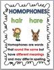 Homophones Matching Activity