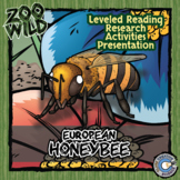 Honey Bee - 15 Resources - Leveled Reading, Slides & Activities