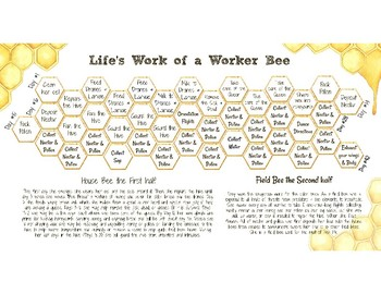 Honey Bee Calendar