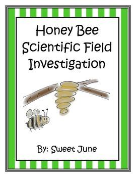 Honey Bee Field Investigation