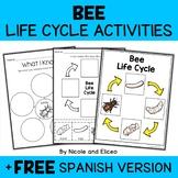 Vocabulary Activity - Honey Bee Life Cycle