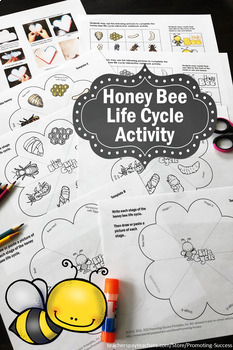 Bee Life Cycle Craft Activity {Craftivity} Bee Life Cycle Sequencing Pictures