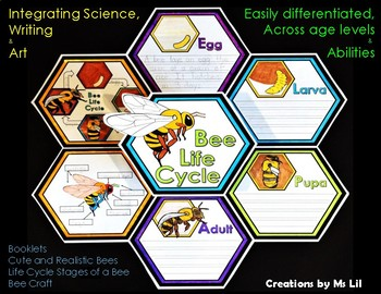 Honey Bee Life Cycles ::  Bee Crafts  ::  Bee Activities