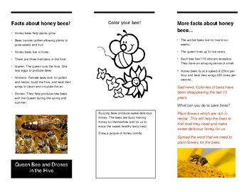 Honey Bee Reading and Writing Excercise