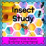 Honey Bee Study - Insect Adaptations FREEBIE!
