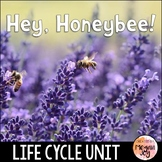 Honey Bees Activity Pack