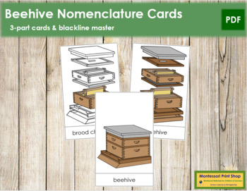 Beehive Nomenclature Cards