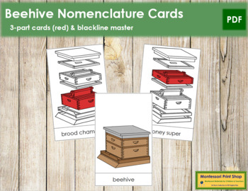Honey Beehive Nomenclature Cards - Red